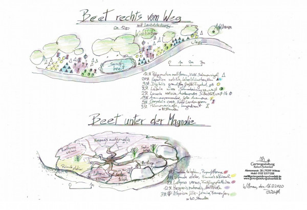 1_gartengestaltung-robert-schoenfeld-gartenplaene-garten-magnolie